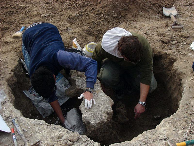 Paleontólogos trabajando sobre el Scelidoterio