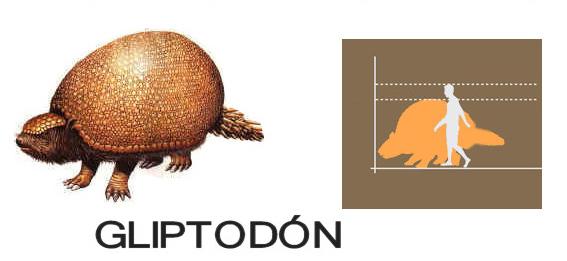 Gliptodón comparado con un hombre