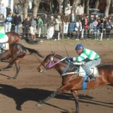 El Club Hípico Fortín Tordillo de Daireaux corre el 16 de noviembre