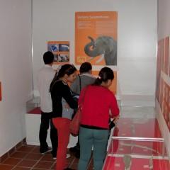 Museo de Historia y Ciencias Naturales