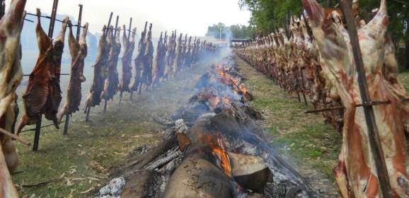 Fiesta del Cordero 2014: Venta de tarjetas