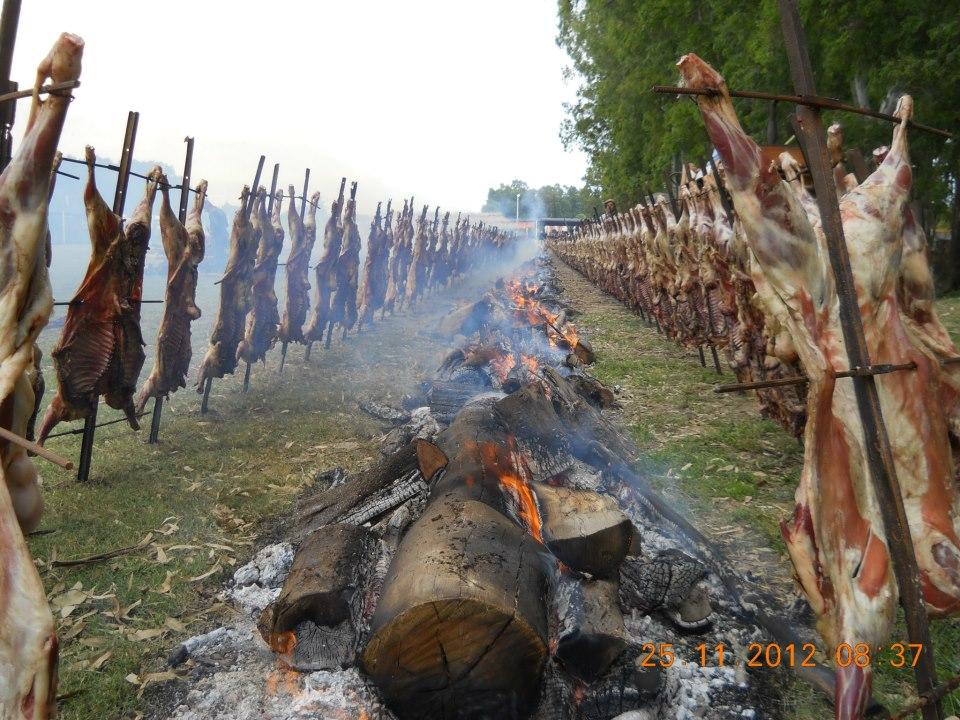 Fiesta del Cordero 2014